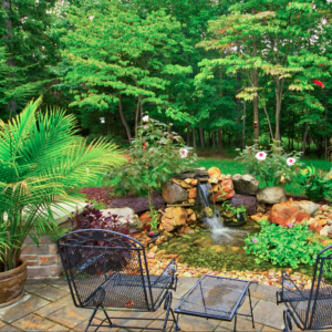 Colorful Pond and Hardscape Created by Richmond Hardscape Designers and Builders